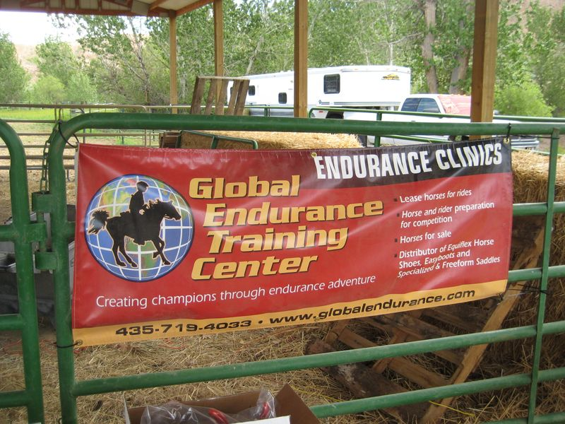 Hoof Care Clinic proved to be a great success - Global Endurance Blog
